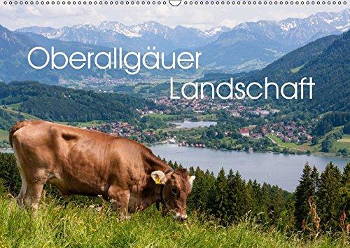 9783665252298: Oberallgäuer Landschaft (Wandkalender 2017 DIN A2 quer): Die Landschaft des Oberallgäus zeigt eindrucksvoll alle Jahreszeiten und diese Gegend ist immer eine Reise wert. (Monatskalender, 14 Seiten )