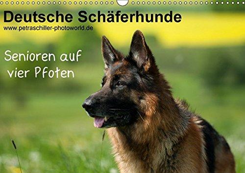 9783665260026: Deutsche Schäferhunde - Senioren auf vier Pfoten (Wandkalender 2017 DIN A3 quer): Schäferhunde - auch sie werden älter .... (Monatskalender, 14 Seiten )