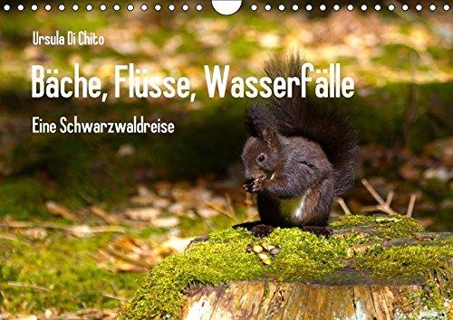 9783665260750: Bäche, Flüsse, Wasserfälle - Eine Schwarzwaldreise (Wandkalender 2017 DIN A4 quer): Eine Reise zu den schönsten Gewässern im Schwarzwald (Monatskalender, 14 Seiten )