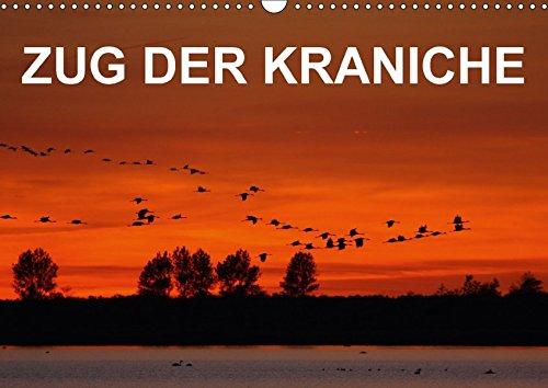 9783665276171: Zug der Kraniche (Wandkalender 2017 DIN A3 quer): Stimmungsvolle Fotografien von Grauen Kranichen in Norddeutschland (Monatskalender, 14 Seiten )