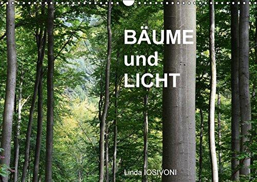 9783665285807: BÄUME und LICHT (Wandkalender 2017 DIN A3 quer): Magie aus Licht und Bäumen (Geburtstagskalender, 14 Seiten )