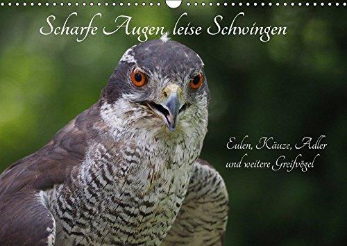 9783665317997: Scharfe Augen, leise Schwingen (Wandkalender 2017 DIN A3 quer): Eulen und Taggreifvögel (Monatskalender, 14 Seiten )