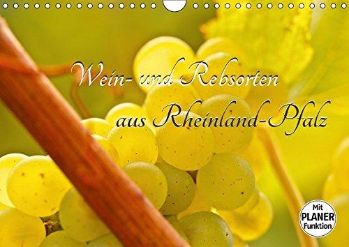 9783665378110: Wein- und Rebsorten aus Rheinland-Pfalz (Wandkalender 2017 DIN A4 quer): Bilder und Eindrücke aus der Weinanbauregion Rheinland-Pfalz (Geburtstagskalender, 14 Seiten )