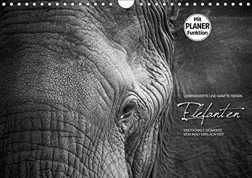 9783665380724: Emotionale Momente: Elefanten in black and white (Wandkalender 2017 DIN A4 quer): Liebenswerte und sanfte Riesen (Geburtstagskalender, 14 Seiten)