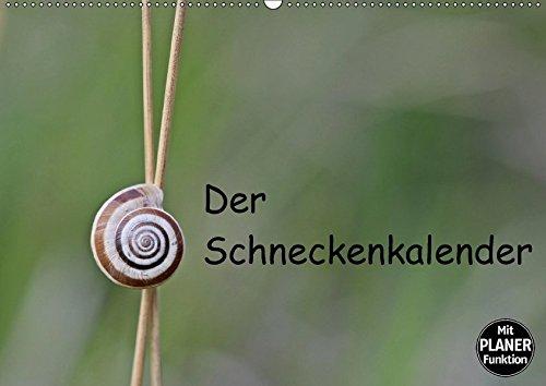 9783665384111: Der Schneckenkalender (Wandkalender 2017 DIN A2 quer): Sechs verschiedene einheimische Schneckenarten in 13 farbigen Makroaufnahmen (Geburtstagskalender, 14 Seiten)