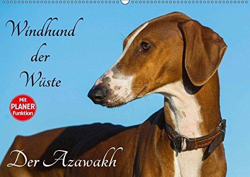9783665386184: Windhund der Wüste - Der Azawakh (Wandkalender 2017 DIN A2 quer): Der Windhund der Tuareg, der Azawakh auf 13 hinreißenden Fotos (Geburtstagskalender, 14 Seiten )
