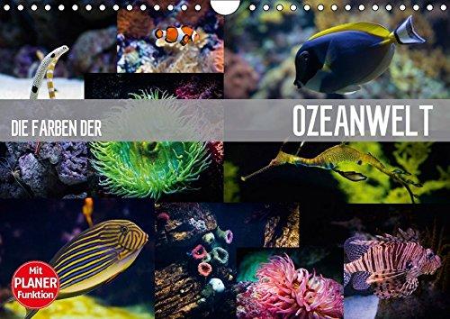 9783665396282: Die Farben der Ozeanwelt (Wandkalender 2017 DIN A4 quer): Die prächtige Unterwasserwelt unserer Meere (Geburtstagskalender, 14 Seiten )