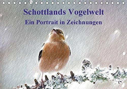 9783665397975: Schottlands Vogelwelt - Ein Porträt in Zeichnungen (Tischkalender 2017 DIN A5 quer): Dieser Kalender ist ein Streifzug durch die Vogelwelt Schottlands Zeichnungen (Monatskalender, 14 Seiten)