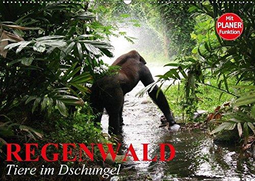 9783665406943: Regenwald. Tiere im Dschungel (Wandkalender 2017 DIN A2 quer): Die wunderbare Artenvielfalt im Regenwald (Geburtstagskalender, 14 Seiten )