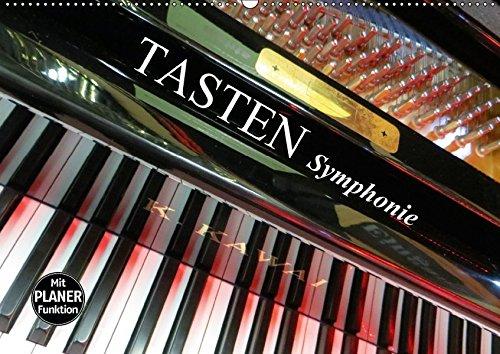 9783665407735: TASTEN Symphonie (Wandkalender 2017 DIN A2 quer): Tasteninstrumente aus ungewohnten Perspektiven fotografiert. (Geburtstagskalender, 14 Seiten)