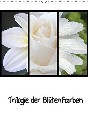 9783665421670: Trilogie der Blütenfarben (Wandkalender 2017 DIN A3 hoch): Die farbliche Blütenvielfalt dieses Kalenders gleicht einem Regenbogen (Planer, 14 Seiten)