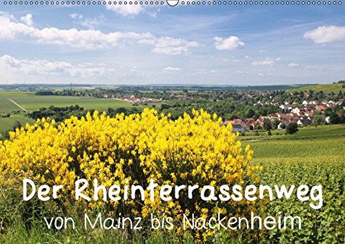 9783665465186 - Brigitte Dürr: Der Rheinterrassenweg von Mainz bis Nackenheim (Wandkalender 2017 DIN A2 quer): Wandern auf dem Rheinterrassenweg mit herrlichen Ausblicken über ... die Rheinebene (Monatskalender, 14 Seiten ) - Libro