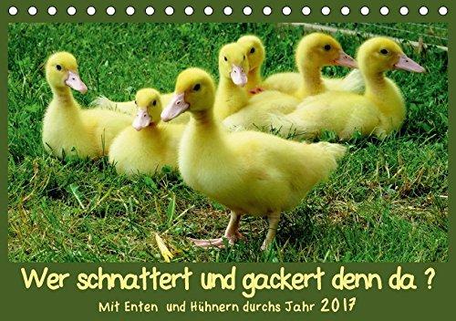 9783665515843 - Sabine Löwer: Wer gackert und schnattert denn da? (Tischkalender 2017 DIN A5 quer): Glückliche Hühner und Enten in unserem Garten in Nieste fotografier (Geburtstagskalender, 14 Seiten ) - Buch