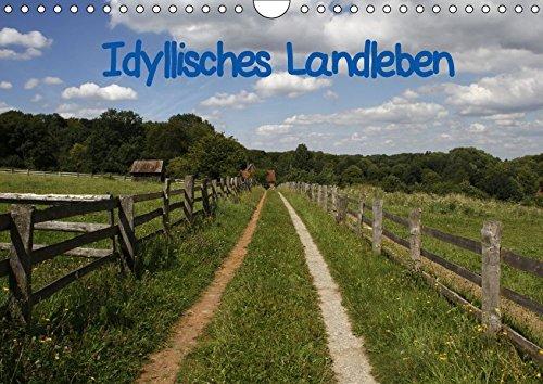Idyllisches Landleben (Wandkalender 2018 DIN A4 quer): Ländliche Idylle im Weserbergland (Monatskalender, 14 Seiten ) - Antje Lindert-Rottke