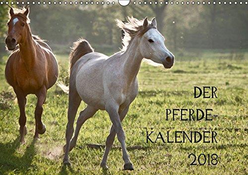 Pferdekalender (Wandkalender 2018 DIN A3 quer): wunderbare Pferde (Monatskalender, 14 Seiten ) - Hans Zitzler