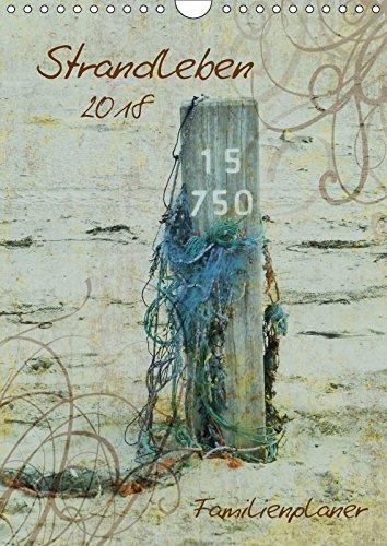 Strandleben / Familienplaner (Wandkalender 2018 DIN A4 hoch): Sonne, Strand und Meer (Familienplaner, 14 Seiten ) - k. A. SchnelleWelten