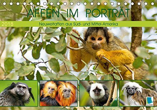 Affen im Porträt: Mittel- und Süd-Amerika (Tischkalender 2018 DIN A5 quer): Neuweltaffen aus Süd- und Mittel-Amerika (Monatskalender, 14 Seiten ) - CALVENDO
