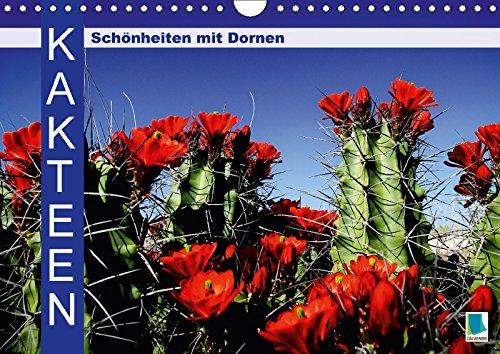 9783665647858: Kakteen: Schönheiten mit Dornen (Wandkalender 2018 DIN A4 quer): Kakteen: Bizarre Überlebenskünstler (Monatskalender, 14 Seiten )