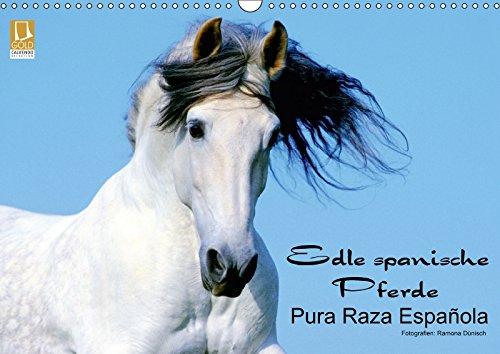 Edle spanische Pferde - Pura Raza Espanola: Ramona Dünisch www.