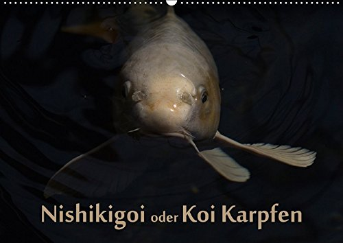 Nishikigoi oder Koi Karpfen (Wandkalender 2018 DIN: Erwin Renken