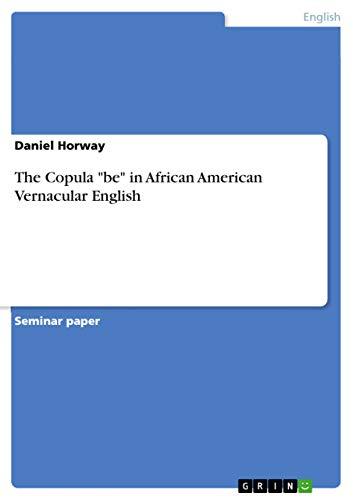 9783668029057: The Copula