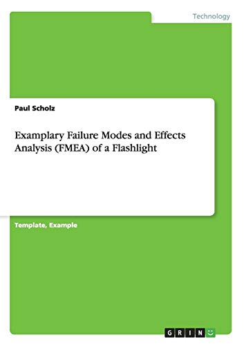Examplary Failure Modes and Effects Analysis (FMEA): Scholz, Paul