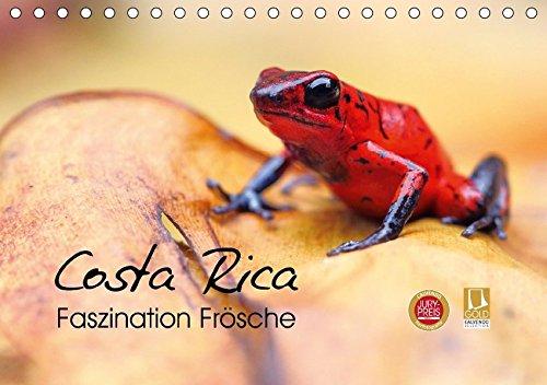 Costa Rica - Faszination Frösche (Tischkalender 2018: Kevin Eßer