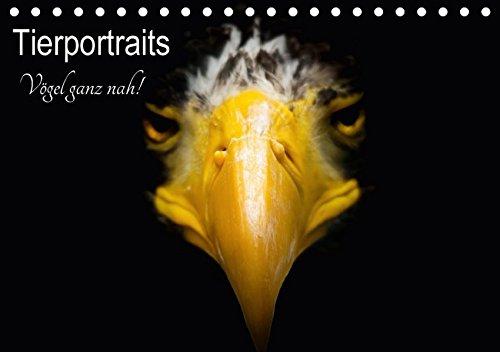 Tierportraits - Vögel ganz nah (Tischkalender 2018: Alexander Honold