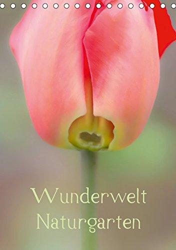 Wunderwelt Naturgarten (Tischkalender 2019 DIN A5 hoch): Erwin Renken