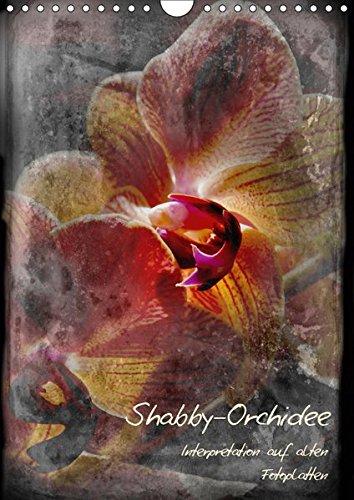 Shabby - Orchidee, Interpretation auf alten Fotoplatten: Erwin Renken