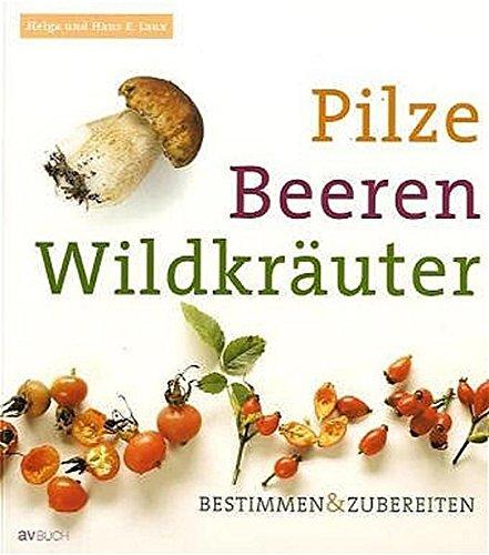 9783704019882: Pilze Beeren Wildkräuter