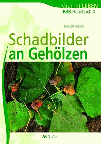 9783704022387: BdB-Handbuch 10. Schadbilder an Gehölzen