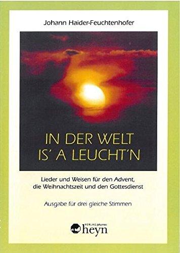 9783708402321: In der Welt is' a Leucht'n