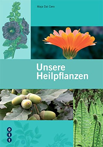 9783722500911: Unsere Heilpflanzen: «Der neue Flück» - Die 150 wichtigsten einheimischen Arz...