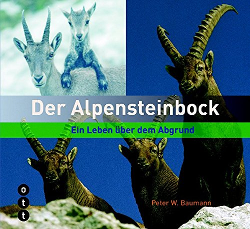 9783722500966: Der Alpensteinbock: Ein Leben über dem Abgrund