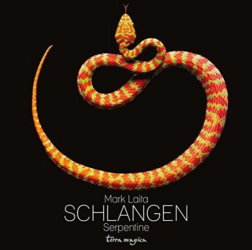 9783724310440: Schlangen-Serpentine