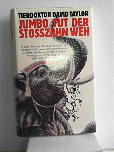 9783726364953: Jumbo tut der Stosszahn weh. Und andere, höchst merkwürdige, gefahrvolle und humorige Fälle aus der Praxis des Tierdoktors
