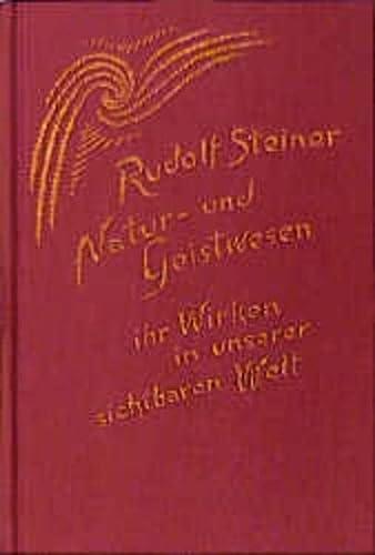 9783727409806: Natur- und Geistwesen, ihr Wirken in unserer sichtbaren Welt: Hörernotizen von Achtzehn Vorträgen in verschiedenen Städten 1907-1908