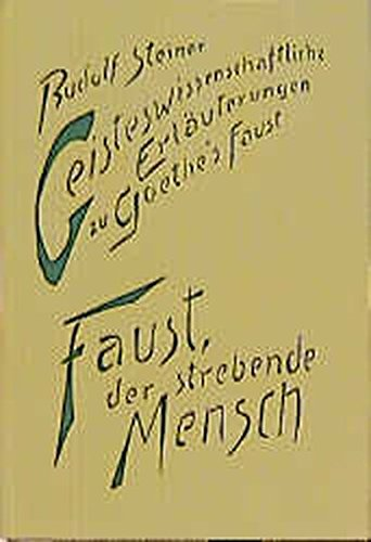 Geisteswissenschaftliche Erläuterungen zu Goethes 'Faust', 2 Bde., Bd.1, Faust, der ...