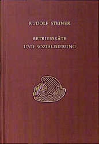 Betriebsräte und Sozialisierung: Rudolf Steiner