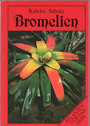 9783730401668: Bromelien. Pflanzen f�r das Heim