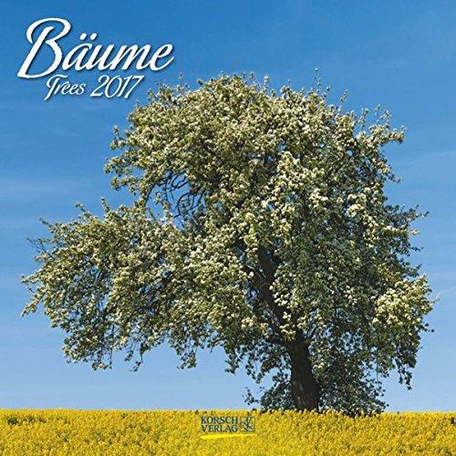 9783731819417: Bäume 2017 Broschürenkalender: Broschürenkalender mit Ferienterminen
