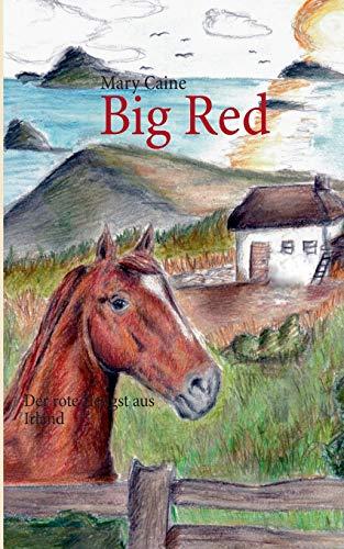 9783732286416: Big Red (German Edition)