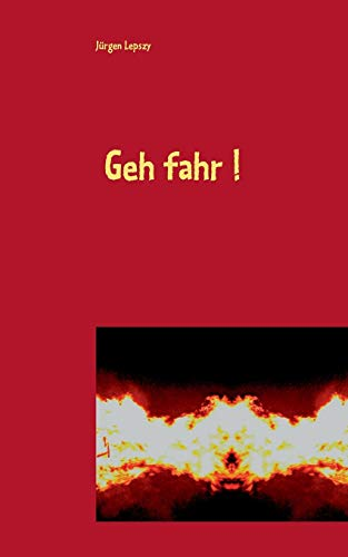 9783732294763: Geh fahr ! (German Edition)