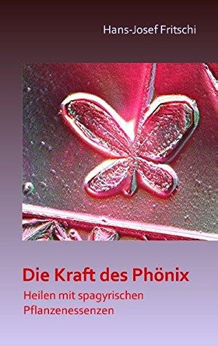 9783732297078: Die Kraft Des Phonix