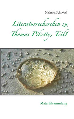 9783734759192: Literaturrecherchen zu Thomas Piketty, Teil1 (German Edition)
