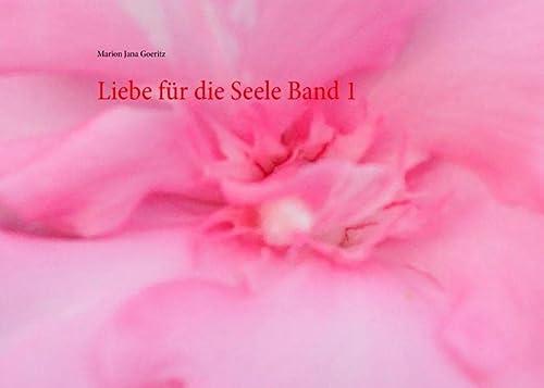 9783735740458: Liebe für die Seele Band 1