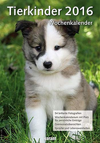 9783735900845: Wochenkalender - Tierkinder 2016