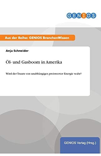 9783737948500: Öl- und Gasboom in Amerika (German Edition)