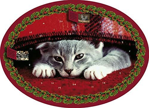 9783760798288: Katzenweisheiten